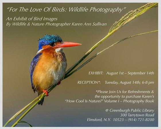 For The Love Of Birds:  Wildlife Photography Exhibit