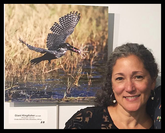For The Love Of Birds Exhibit - Greenburgh Public Library, Greenburgh, N.Y. -- Fall 2018<br /> Photo Credit:  Leah James