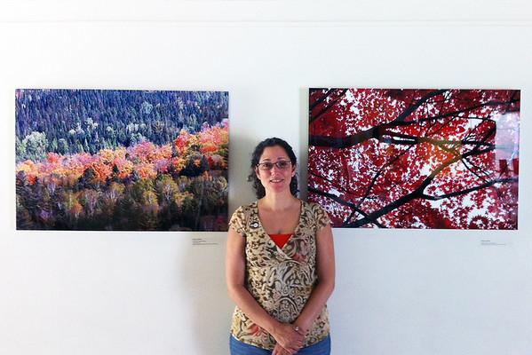 SEEING TREES EXHIBIT ~ New York Hall of Science Museum, Queens, N.Y.-2012