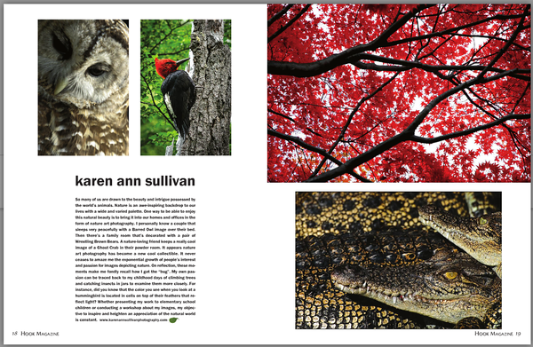 Featured Photographer Article in The Hook Magazine's 10th Annual Photography Issue - July/August 2014