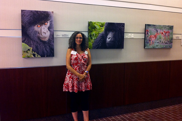 BLUE HILL ARTS & CULTURAL CENTER, ANIMAL LIFE EXHIBIT - 2012
