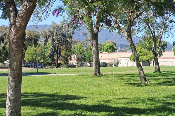 1665 Branham Park ct, San Jose