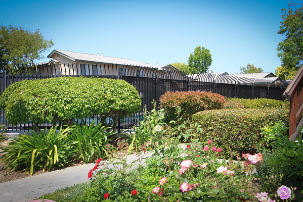 3175 Shofner Place, San Jose