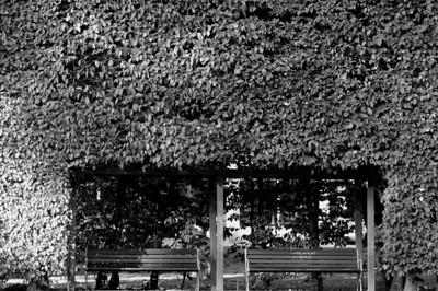 Hoglandspark