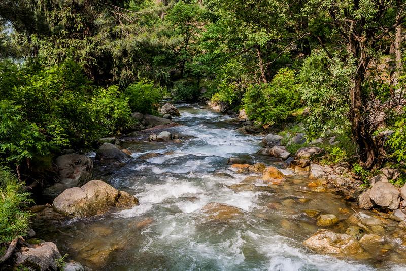 The Rajpari Wildlife Sanctuary at Daksum, Kashmir