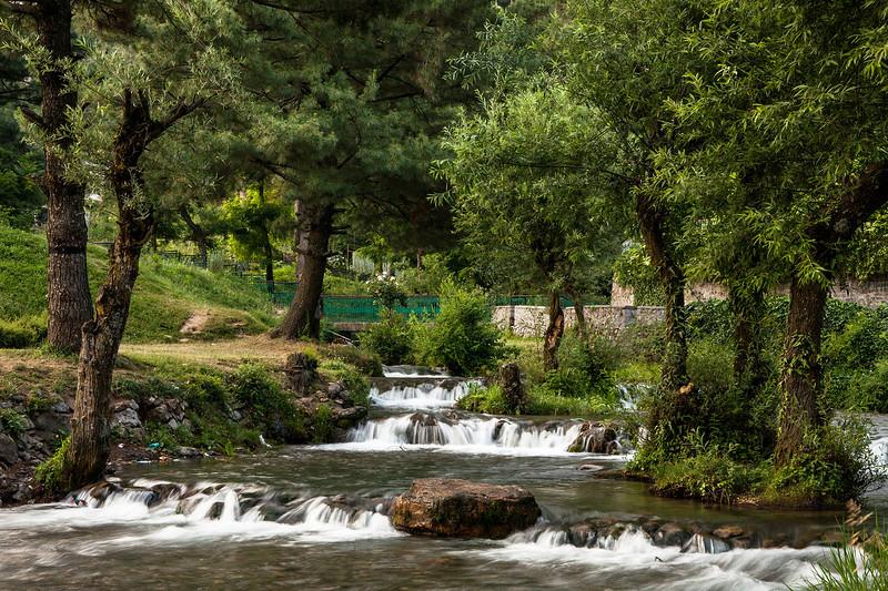 Kokernag Botanical Garden, Kashmir, India
