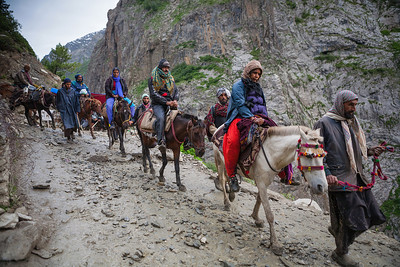 A series of horses and their horsemen take pilgrims through the slush and stone filled Amarnath yatra route from Baltal to the holy Amarnath cave.