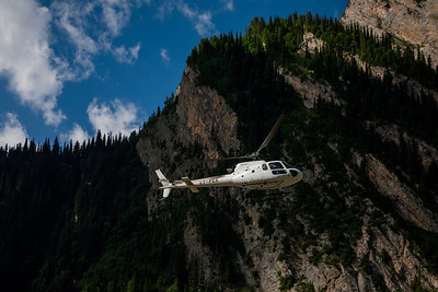A helicopter flies through the lush green pine forest ferrying passengers from the Amarnath yatra