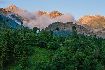 Clouds in the midst of the sun kissed Himalayas and the dense lush green pine forest that cover the mountain slopes is the stunning landscape of Chatpal, Kashmir.