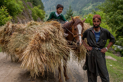 A horse rider, Imran, shows off his strong heavily laden with hay horse, all set to leave for the annual Amarnath Yatra in Kashmir.