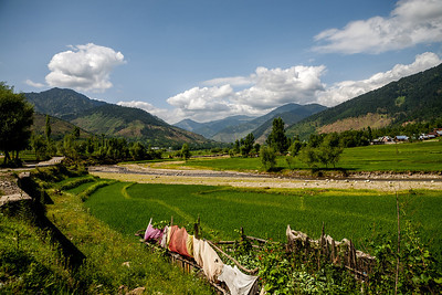 Green fields, streams flowing through them, surrounded by the beautiful green Himalaya mountains, a typical landscape all through Lolab valley, Kupwara district in northern Kashmir, India.