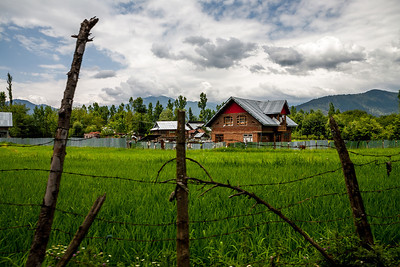 A typical village scene, wooden house surrounded by green rice fields and surrounded by the Himalayan mountains in Lolab valley, Kupwara district in northern Kashmir, India.