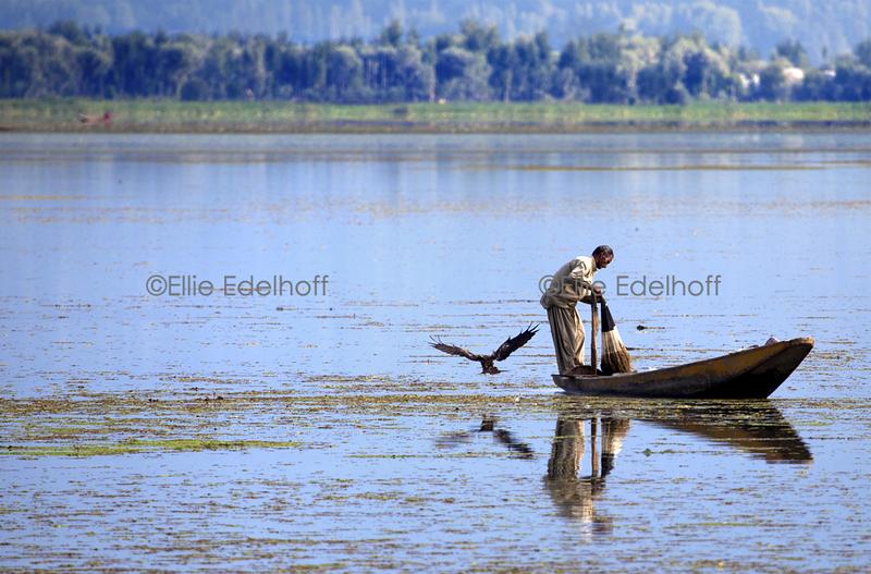 Afternoon Fishing on Dal Lake - Kashmir, India