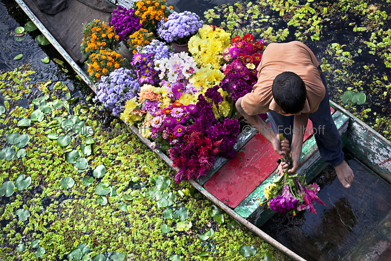 Nageen Lake Flower Seller - India