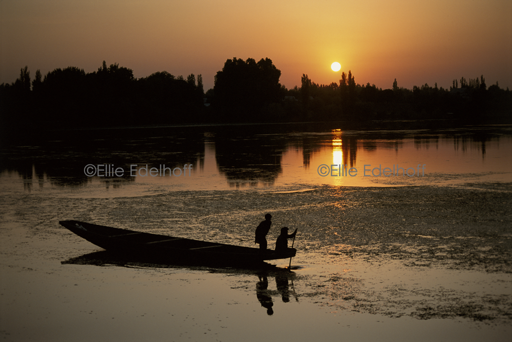 Dal Lake Sunset - Kashmir, India