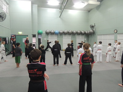 Kata, Combinations & Stick Fighting Course June 2016
