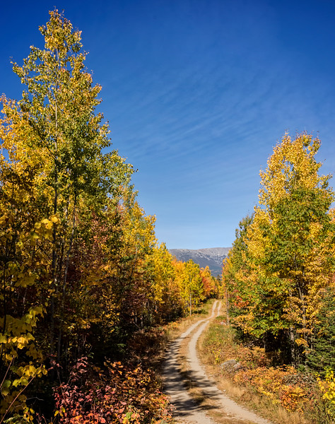 Katahdin Region - Golden Road 10-7-16