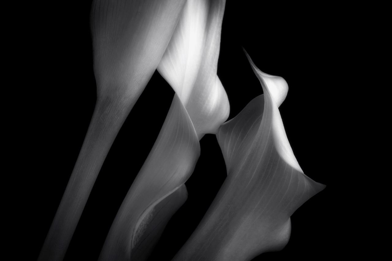Three Callas