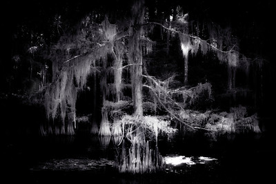 Caddo Ghosts