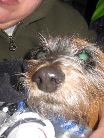 Raccoon Mtn & Lookout Valley 12.19-23.09