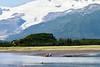 Mother_Brown_Bear_2nd_Year_Cubs_Hallo_Bay_August_2020_Katmai_Alaska_0010