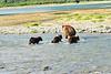 Mom_Triplett_Spring_Cubs_August_2020_Katmai_Alaska_0002