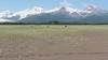 Scenic Katmai and Kodiak Alaska 2021