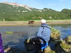 Geographic_Harbor_August_2020_Katmai_Alaska_0002