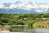Hallo_Bay_August_2020_Katmai_Alaska_0001