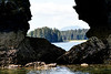 Kodiak_Island_August_2020_Katmai_Alaska_0007