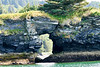 Kodiak_Island_August_2020_Katmai_Alaska_0002