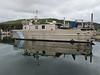 Kodiak_August_2020_Katmai_Alaska_0026