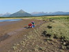 Hallo_Bay_August_2020_Katmai_Alaska_0042