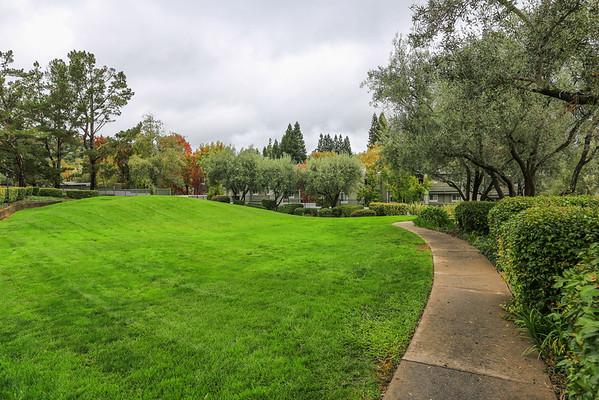 4000 Farm HIll Blvd #311, Redwood city