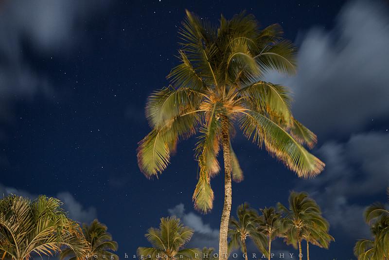 Under Kauai Stars