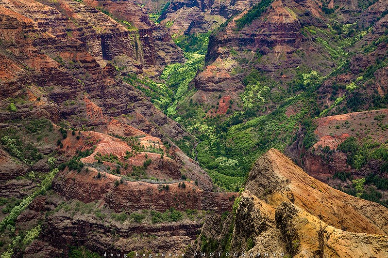 The Colours of Waimea Canyon (#0429)