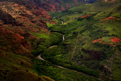 River running through the valley, Waimea Canyon, Hawaii