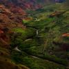 River in the valley, Waimea Canyon, Hawaii