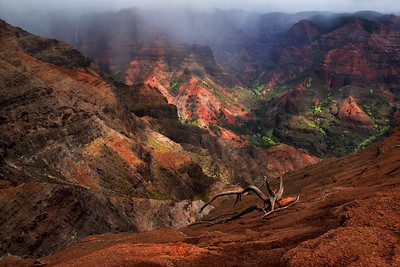 Panoramic view of Waimea Canyon, Kauai, Hawaii