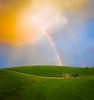 Yellow Brick Rainbow