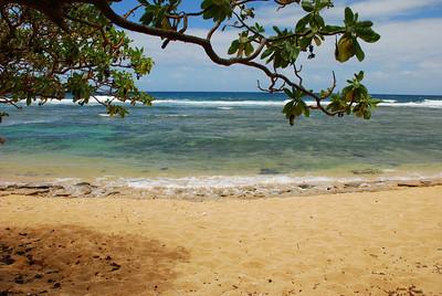 Larson's beach
