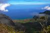 Waimea Canyon Kalalau Trail #16 (5740) Marked