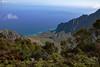 Waimea Canyon Kalalau Lookout #8 (5653) Marked