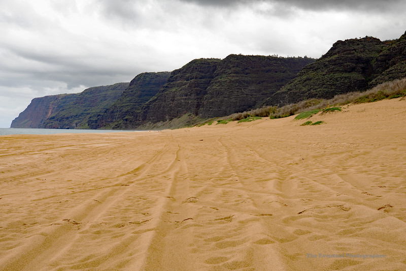 Polihale Beach Na Pali Coast Starts (5576) Marked