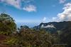Waimea Canyon Kalalau Trail #7 (5694) Marked