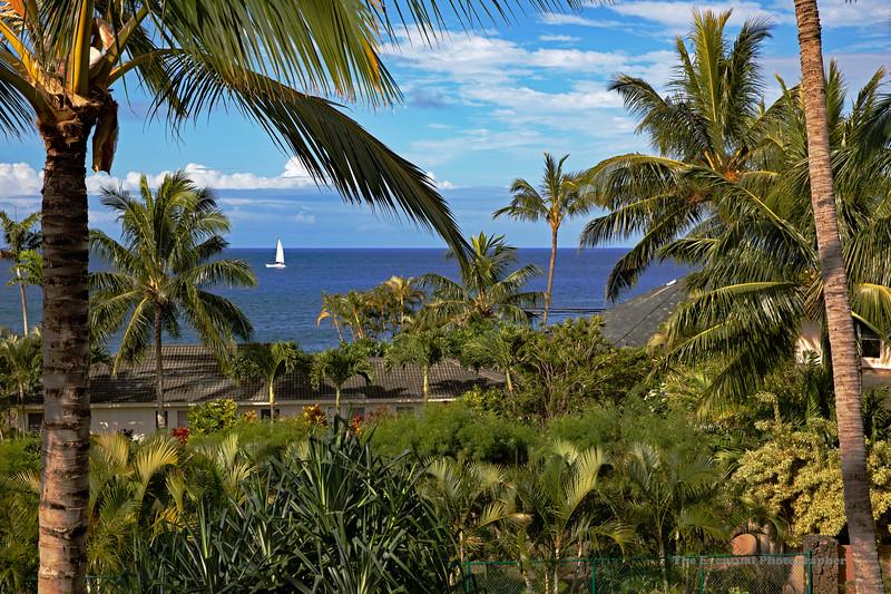 Koloa Landing View From Balcony (5408) Marked