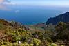 Waimea Canyon Kalalau Lookout #5 (5648) Marked