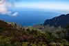 Waimea Canyon Kalalau Lookout #9 (5656) Marked
