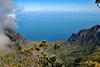 Waimea Canyon Kalalau Trail #11 (5710) Marked