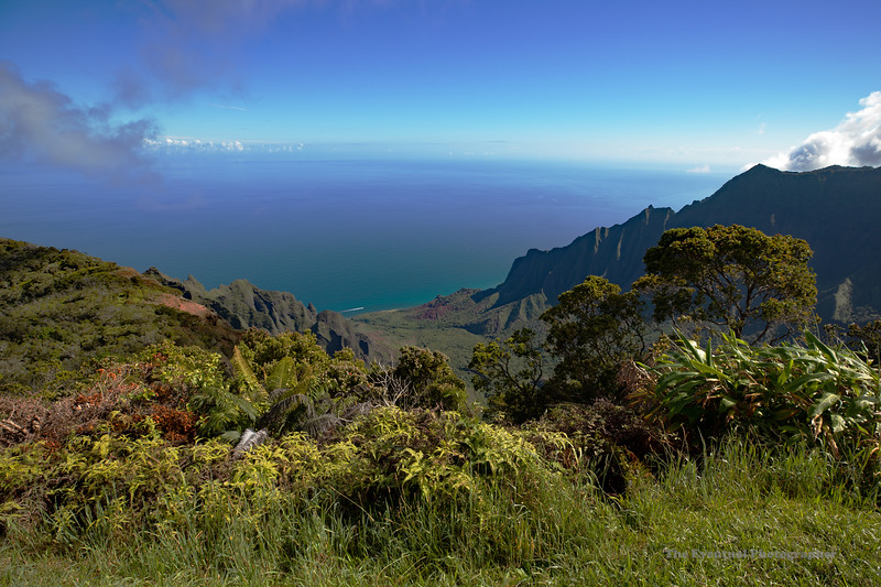 Waimea Canyon Kalalau Lookout #3 (5640) Marked